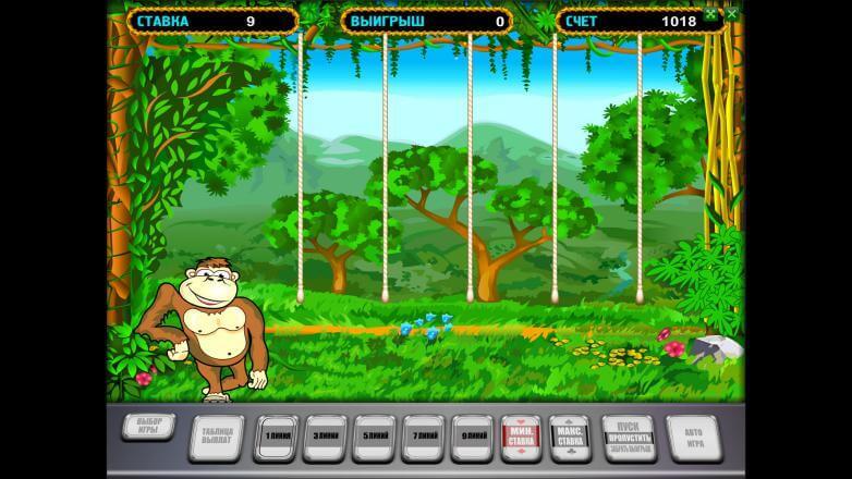 Изображение игрового автомата Crazy Monkey 3